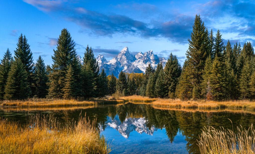 Grand Teton National Park Wyoming Schwabacher Landing Landscape Nature